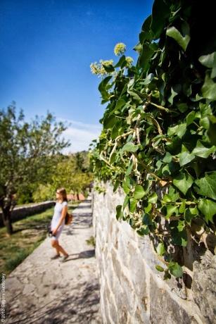 Многодневный Поход По Черногории: Часть 22 - побережье осенью: Бар.