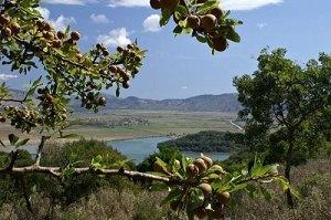 На западе Балканского полуострова. Албания.
